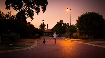 Stock image of someone walking their dog in the evening