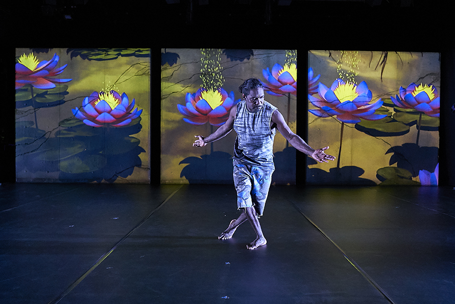 A dance performer on stage