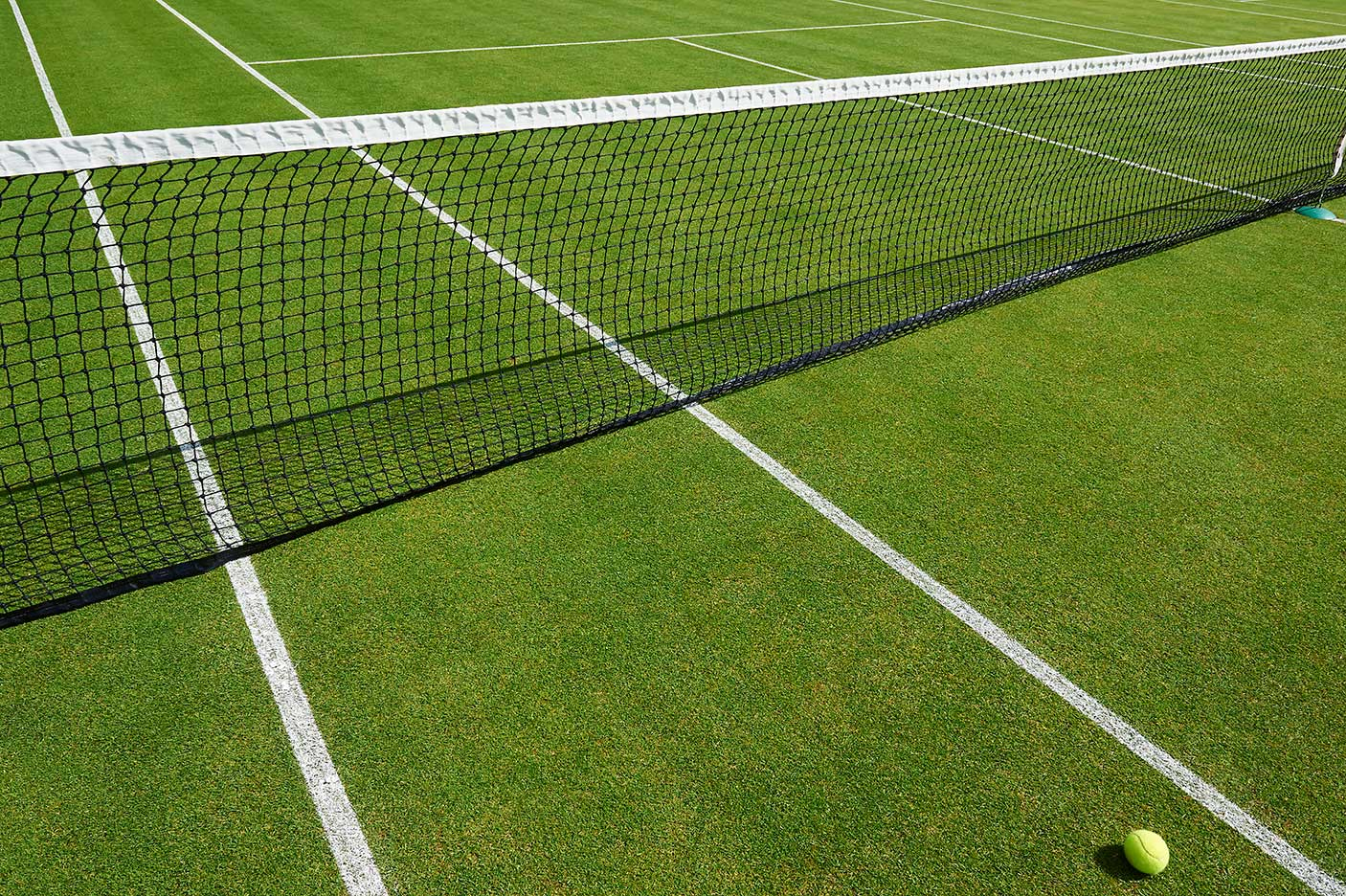 A tennis court and ball